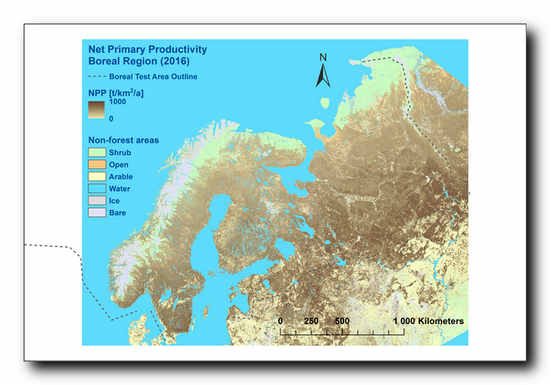Net Primary Production estimate of forest from the previous EU project North State from Finland. ©VTT, University of Helsinki
