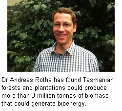 dr and biomass