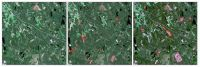 Satellite images provide up-to-date information on forest resources and the amount of carbon bound by forests