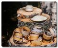 Metsä Spring invests in Innomost, a startup producing valuable bioactive products from birch bark